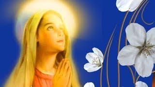 Введение во храм Богородицы.Пусть Богородица как в храм  войдет сегодня в каждый дом#Мирпоздравлений