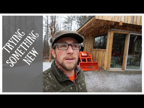 Modern Steader Update | Snow on the Homestead | Comparing Cold Smoked Bacon
