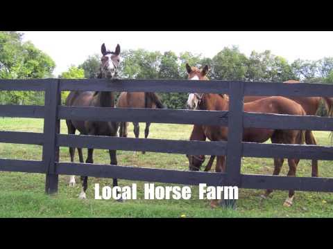 Historic  Woodford  County,  Kentucky