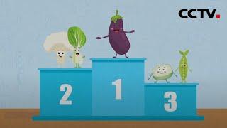 《健康之路》 20201212 控糖新主张(上)| CCTV科教 - YouTube