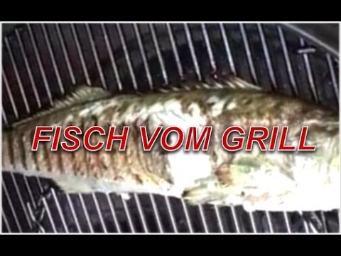 fisch richtig grillen zander vom grill klaus grillt youtube. Black Bedroom Furniture Sets. Home Design Ideas