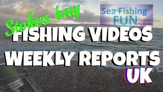 Stokes Bay ~ Pleasure Fishing ~Sea Fishing Fun DogFish ~ Pout ~ And The Marvellous