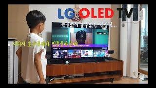 LG OLED TV 55인치 사면서 호구되는 방법! -…