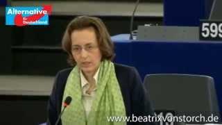 Beatrix von Storch - Straßburg 16.12.2014 - Two Pack, Six Pack: Wir sind auf dem falschen Weg