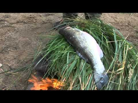 Finnish fish delicacies on an open fire