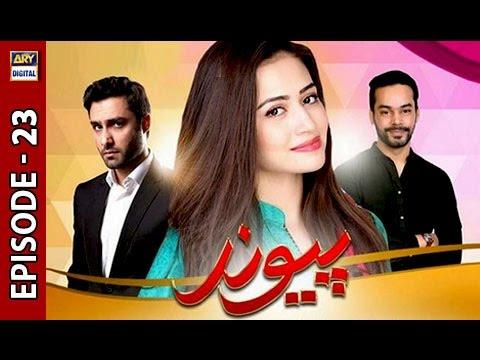 Paiwand Episode 23 - ARY Digital Drama thumbnail