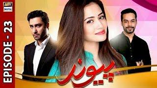 Paiwand Episode 23 - ARY Digital Drama
