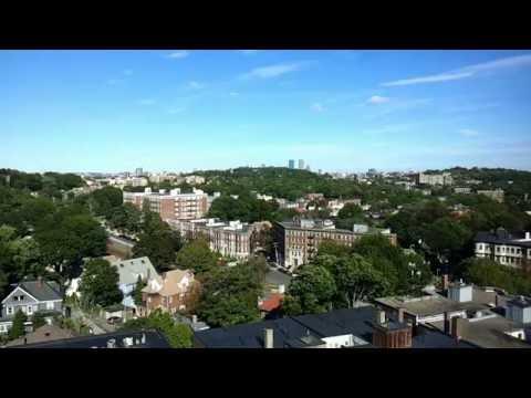 The Sunny View: Boston - Brighton