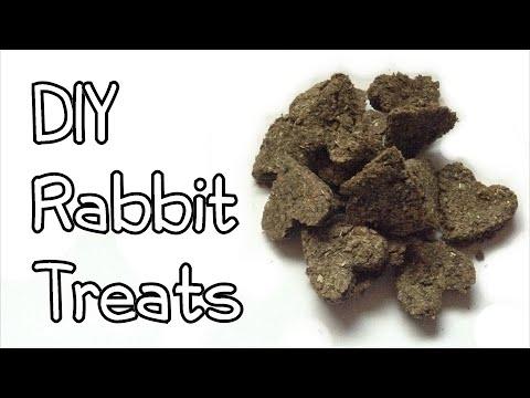 How To Make Homemade Rabbit Treats