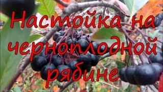 Смотреть видео Настойка из черноплодной рябины без водки