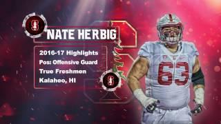"Nate Herbig    ""True Freshmen All American"" ᴴᴰ    Stanford Cardinal Highlights"