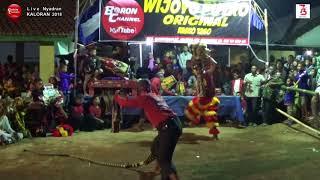 Bantengan Tik Tok Wijoyo Putro Original Live Nyadran Kaloran 2018