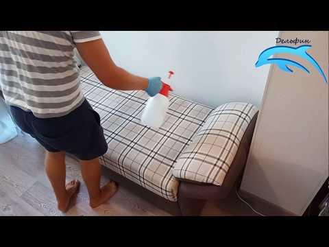 Процесс химчистки дивана