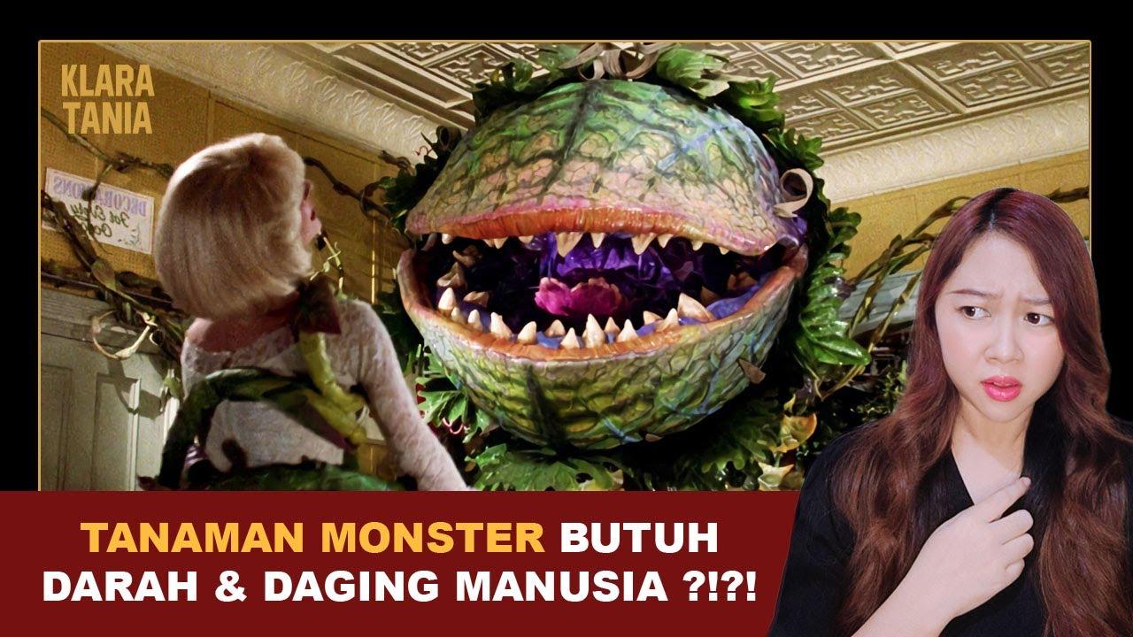 Download TANAMAN MONSTER PEMAKAN MANUSIA ?!?! | Alur Cerita Film oleh Klara Tania