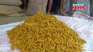 Rajapuri Turmeric Has Got A High Price Of Rs 21,000 Per Quintal