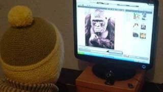 Горилла против человека Man vs Gorilla