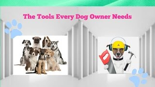 Online Dog Trainer Review: Best Dog Training Courses Online by A Professional Dog Trainer