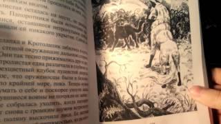 """Обзор на книгу - ,,Коты воители, История Остролистой"""""""