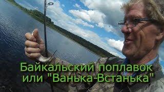 Байкальский поплавок или Ванька-Встанька