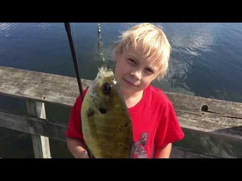 Bush Lake ~ Fishing ~ Bloomington Minnesota