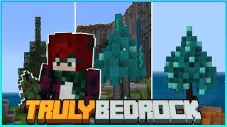 The One About the Trees! Truly Bedrock SMP | Season 2