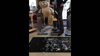 pet hair vacuum cleaner kirby vs dyson vs miele demonstration by centennial tv vac sew more inc