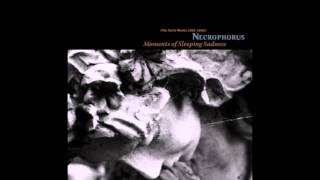 Necrophorus - A Second Very Heavy Grief