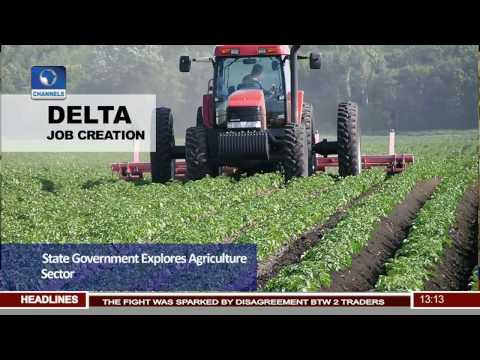 Delta Job Creation: State Government Explores Agriculture Sector