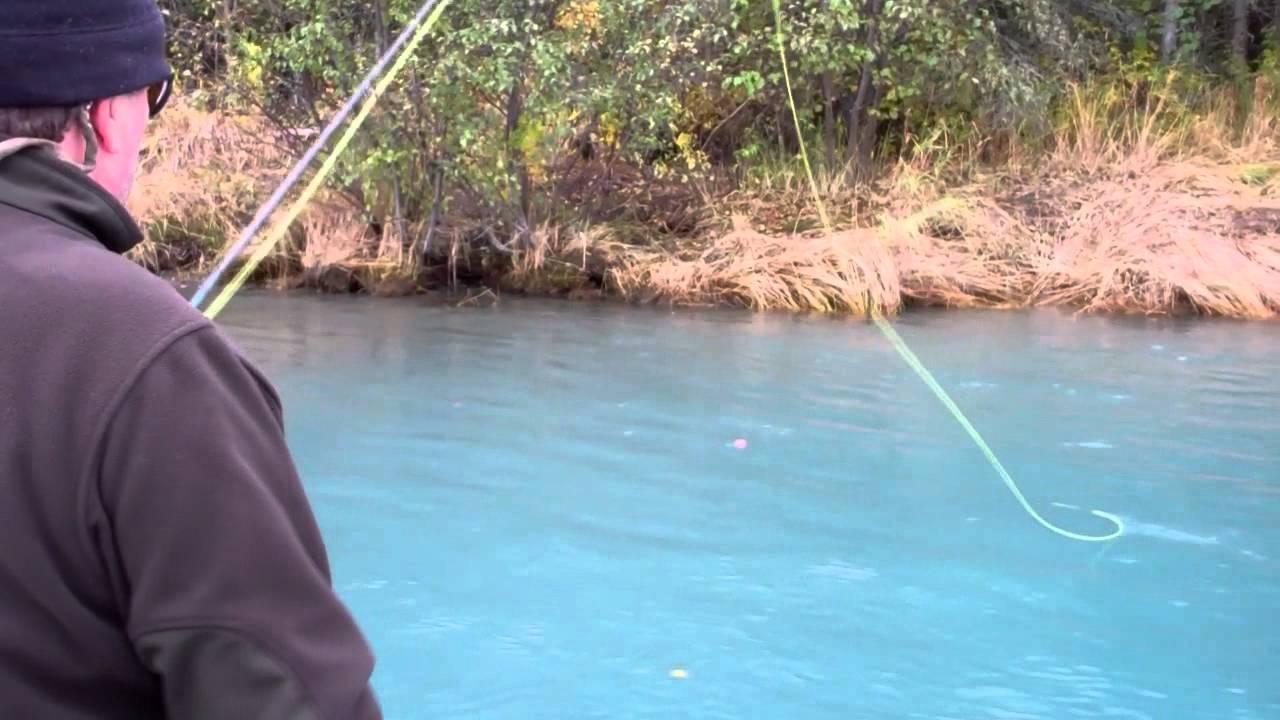 2011 silver salmon fishing on the kenai river youtube for Kenai river fish counts