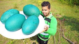 100 $ GREEN EGG || EXPENSIVE BIG GREEN EGG COOKING || EMU FOOD ||