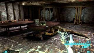 Fallout New Vegas - Wild Wasteland Encounters