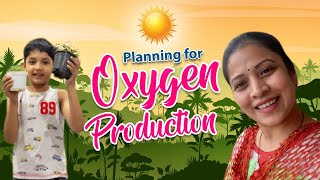 Planning for Oxygen Creation at Home| Shopping to Make Summer Cool| Vlog |Sushma Kiron