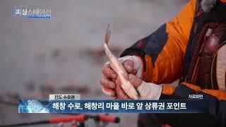 피싱스테이션 민물조황 2월18일
