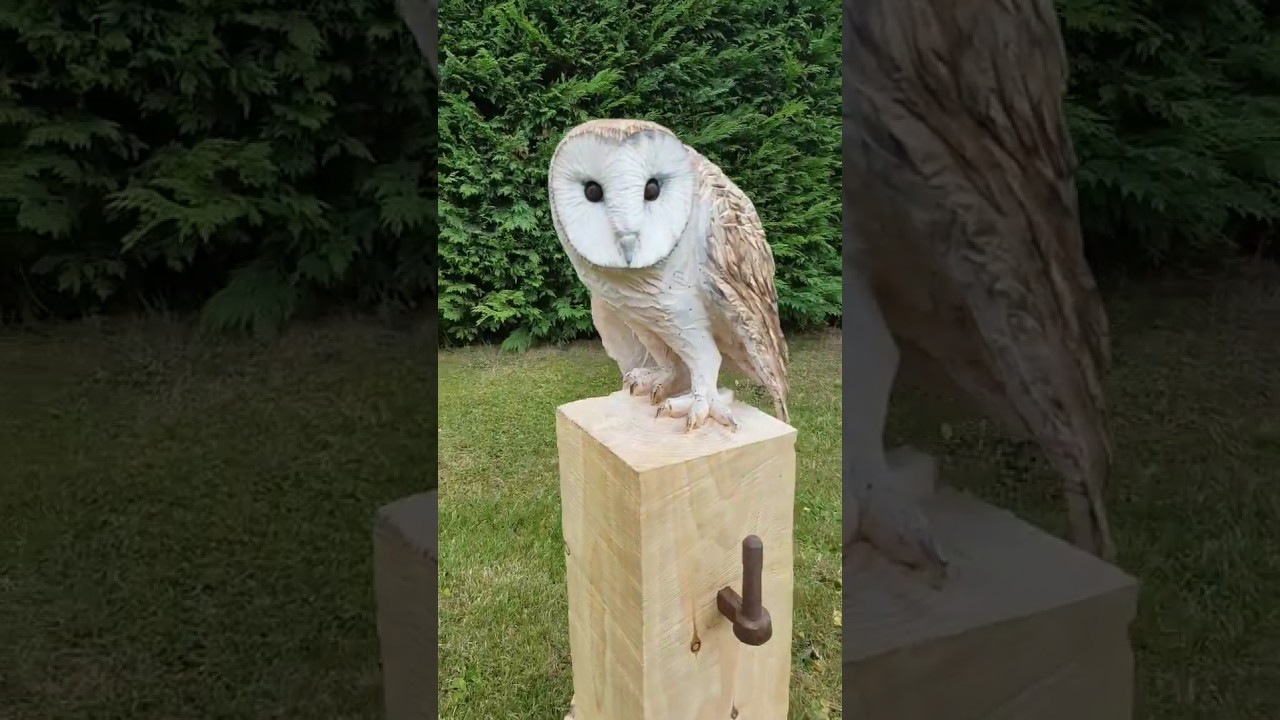 Chainsaw carved barn owl by shaun gilbert youtube