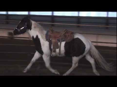 Dakota Saddle Bags Day 1 No Gravel