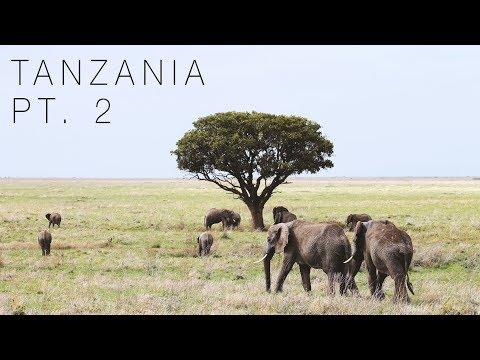 TANZANIA [PART 2] - ON SAFARI