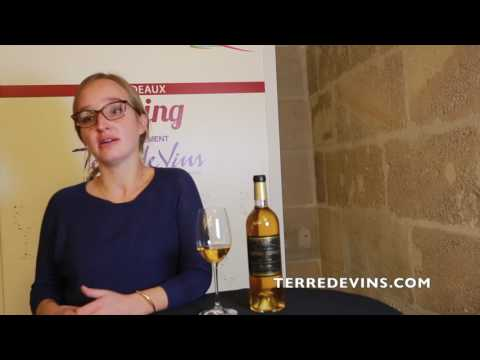 Bordeaux Express -