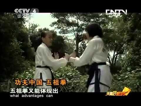 Ngo Cho Kun / Wuzuquan / 五祖拳 Documentary (with English subtitles)
