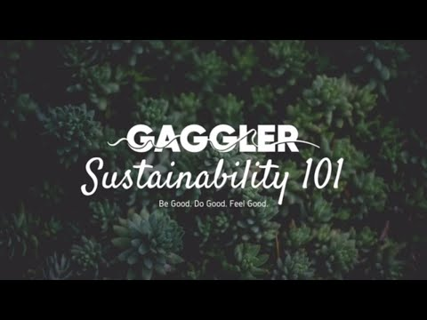 The Gaggler | Recycling your electronics with Ecylex