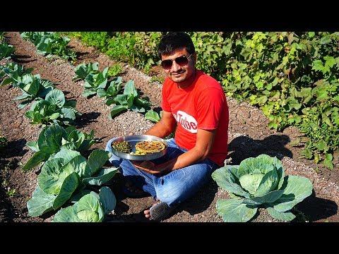 Thali Recipes | Indian Village Cooking | Amazing Food Making