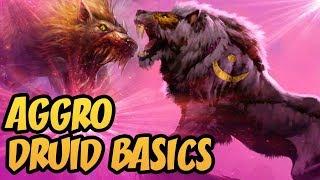 Aggro Druid Basics   Saviors of Uldum   Hearthstone