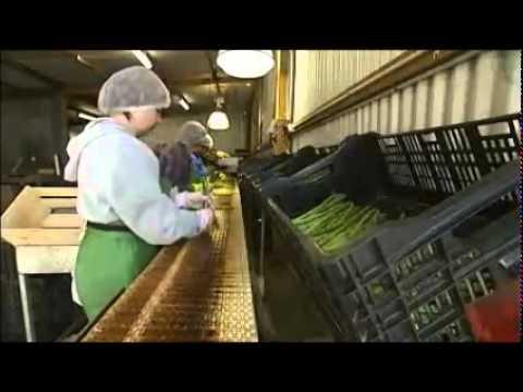 Seasonal Workers Australia