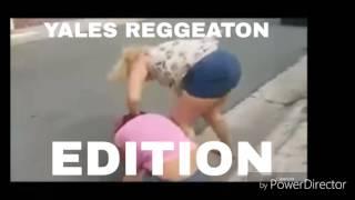 Pelea de yales de arecibo reggeaton edition