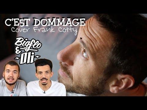 Bigflo & Oli - Dommage COVER Frank Cotty