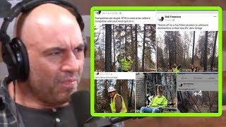 Camp Fire Firefighters Fired Over Silly Photos? - Joe Rogan and Brendan Schaub