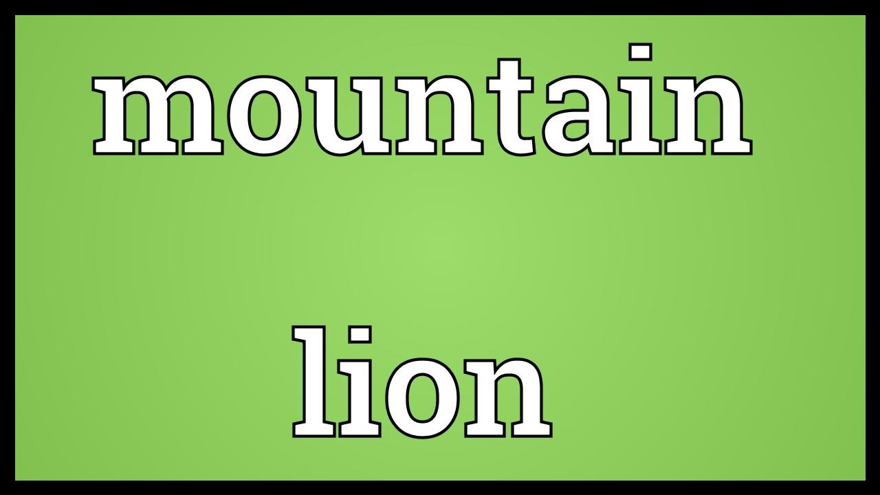 Mountain Lion Meaning Youtube