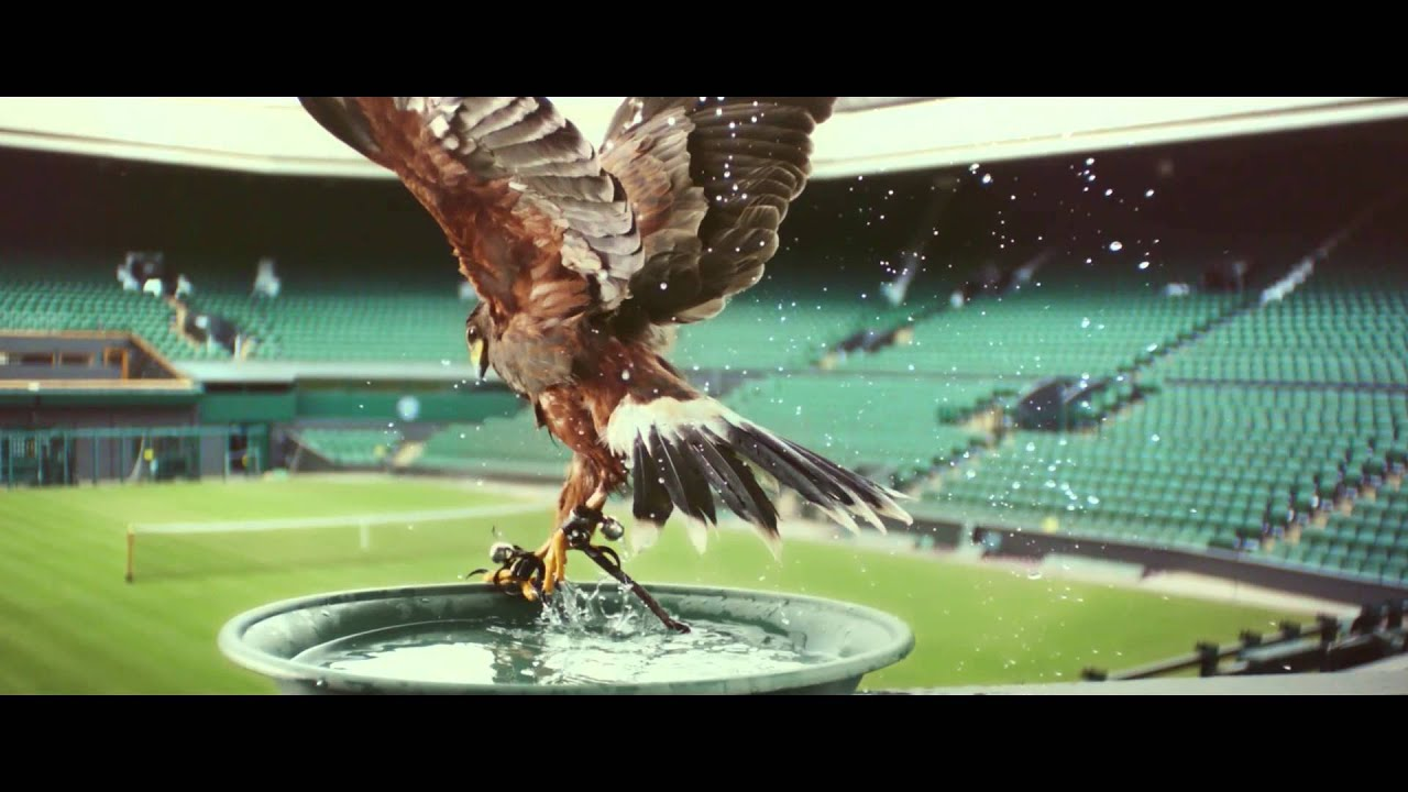 Perfectionists: Rufus - The Real Hawk-Eye | Stella Artois UK