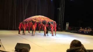 Фестиваль Arena Dance в Сочи
