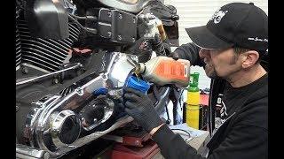Delboy's Garage, Harley  Dyna Gearbox & Primary Oil Change