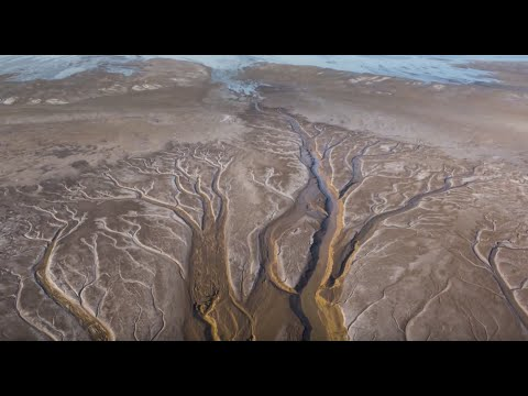 Bringing the Colorado River Delta Back to Life After 16 Dry Years
